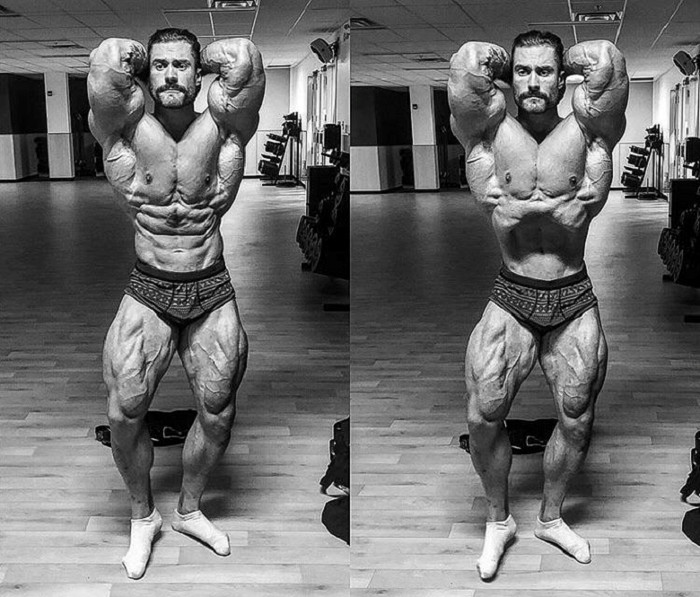 Chris Bumstead Classic Aesthetics
