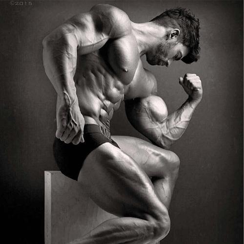 Sergi Constance Bodybuilding